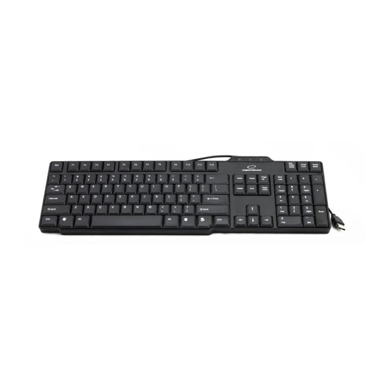Picture of Tastatura ESPERANZA BUFFALO USB, EK116