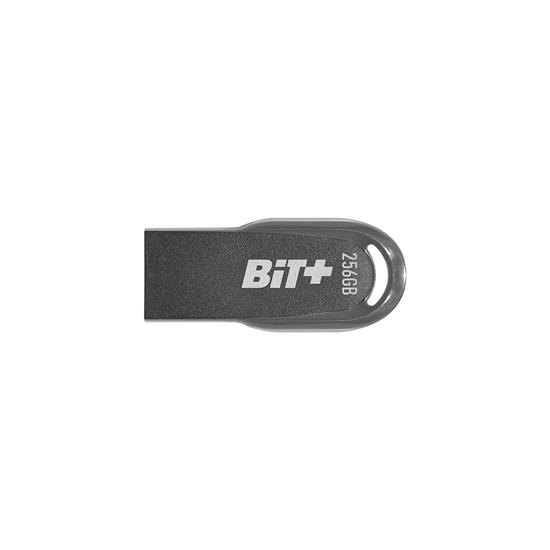 Picture of USB Memory stick PATRIOT 256GB Memory BIT+ USB 3.2 PSF256GBITB32U