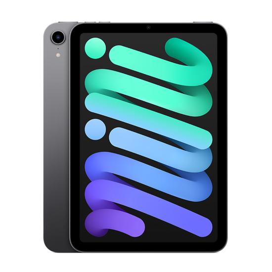 Picture of Apple iPad mini 2021 64GB Wifi Space Gray